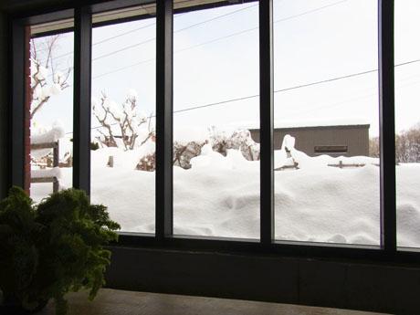 20140105積雪