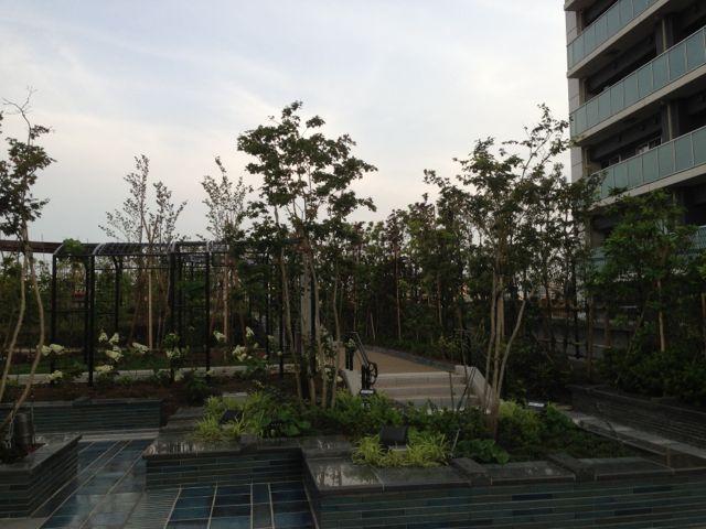 天空庭園4