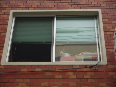 ちーの窓②