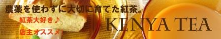 450an-ib_20121002170323.jpg