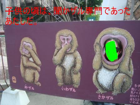 7-30 zoo saru blog