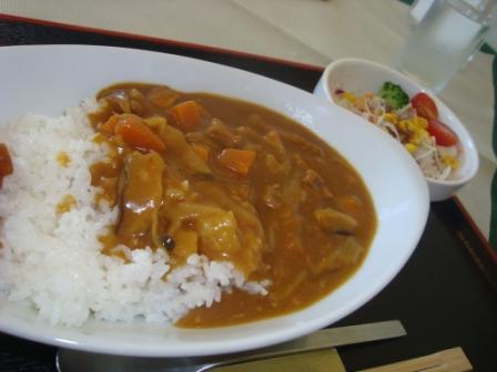 8-18 kasan curry