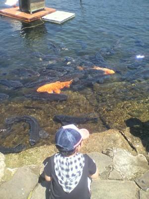21芦ノ湖