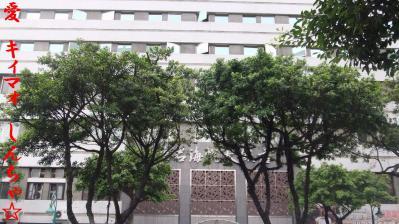 台北 ホテル 2