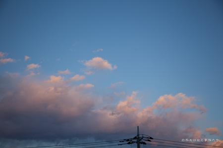 20121209-_MG_5040.jpg