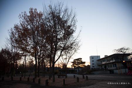 20121214-_MG_5101.jpg