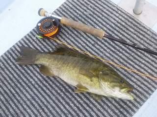 20120929 則松さん 42cm