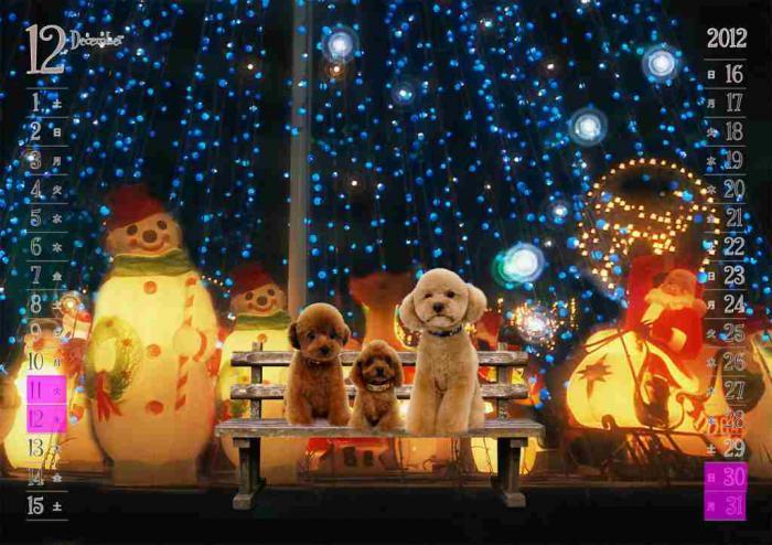 2012年12月クリスマスの夜:植田family_b