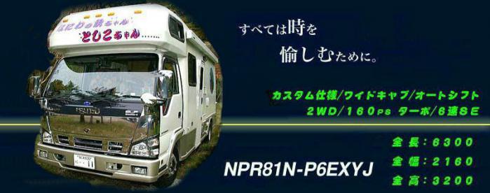 Rex_3b.jpg