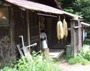 2012 農場研修 070