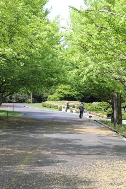 昭和記念公園に来たよ★