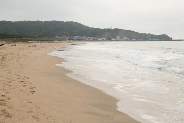海沿いのお散歩行きますよ