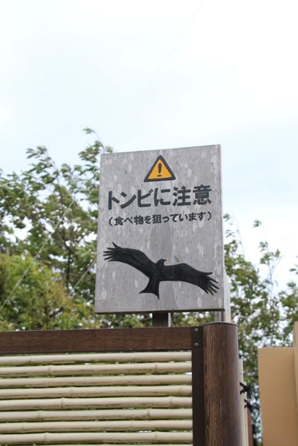トンビに注意です