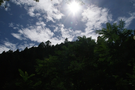 0815_bunzou5.jpg