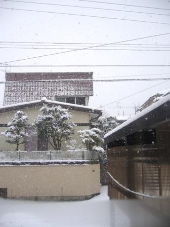 2013年1月1日 雪