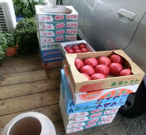 積まれたトマト
