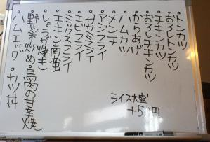 DSC_0205(1).jpg
