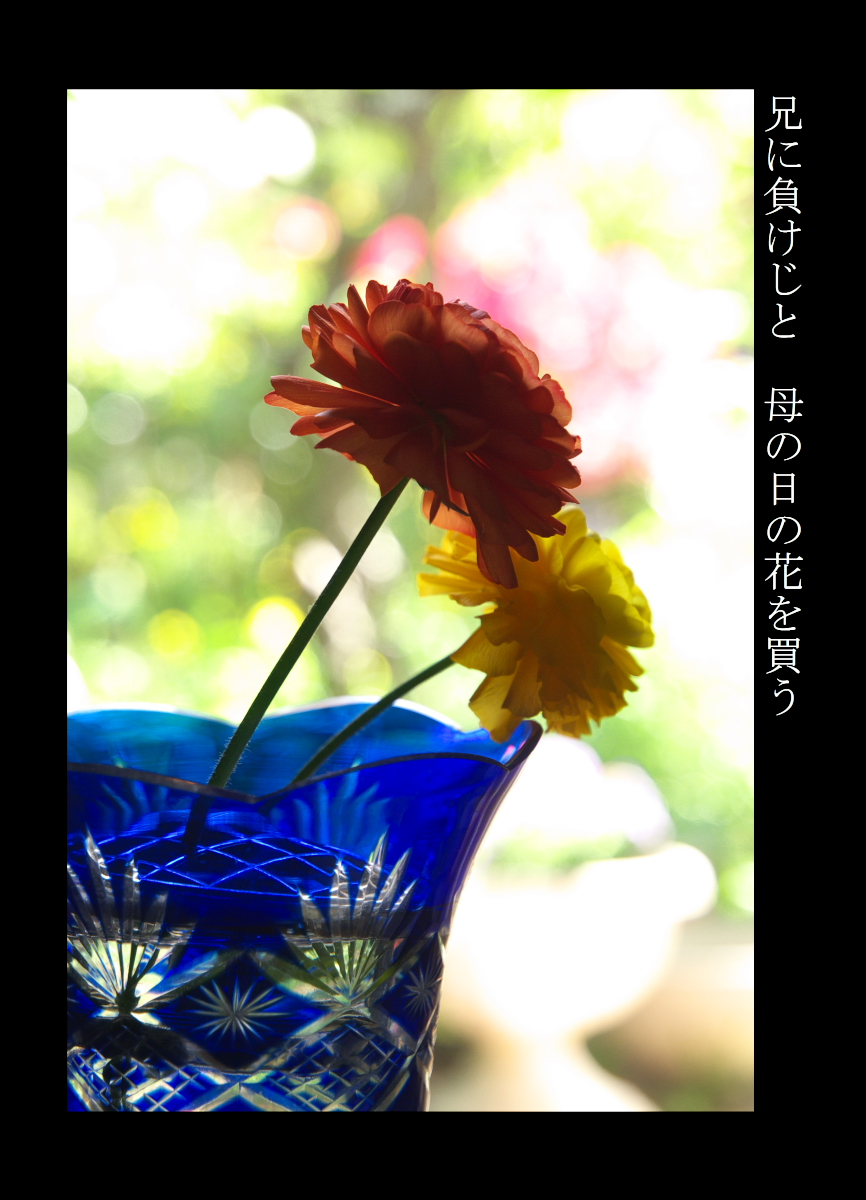 春 兄に負けじと母の日の花を買う2