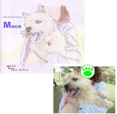 mocaちゃんイラスト[1]