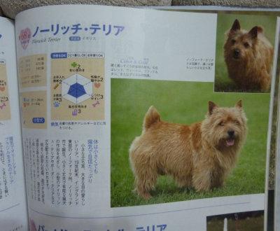 catalog3[1]