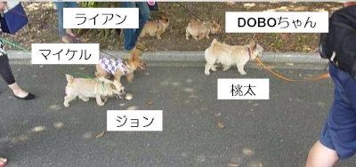 6 ノーリッチーズ大行進[1]