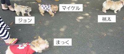 7 ノーリッチーズ大行進[1]