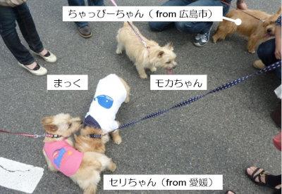 2 4ファミリー集合(応援組)[1]