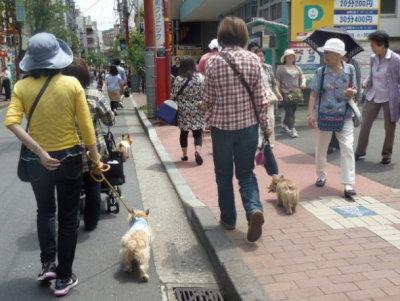 15 中華街[1]