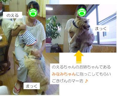 6 みなみちゃん[1]