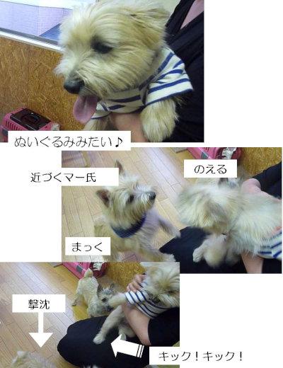 10 撃沈[1]