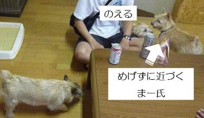 9 がんばる[1]
