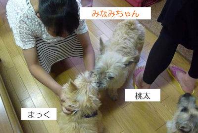 7 みなみちゃん[1]