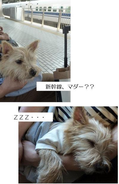 18 新幹線[1]
