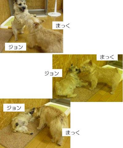 11 じょん&まー[1]