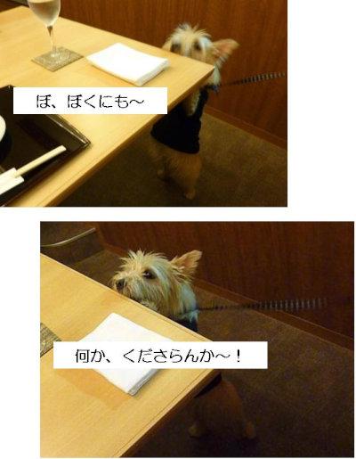 9 なんかおくれ[1]
