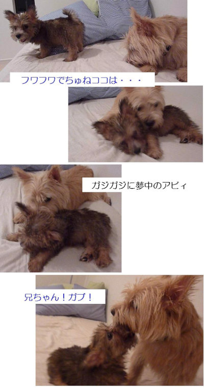 6 ソファーのうえ[1]