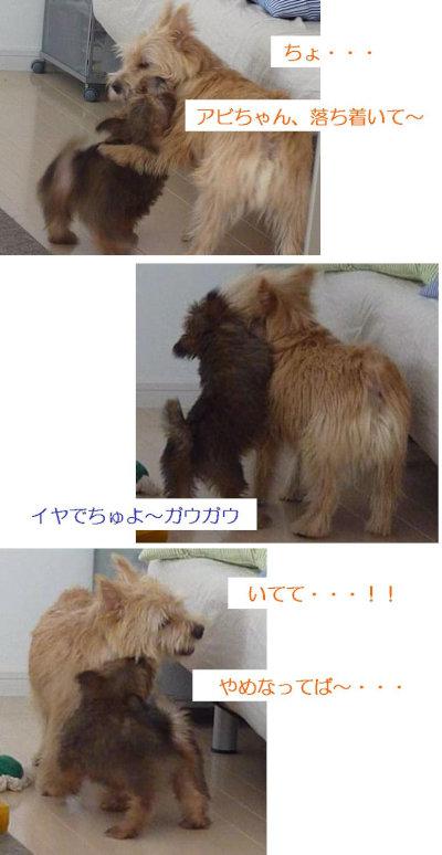 4 まーちんたじたじ[1]