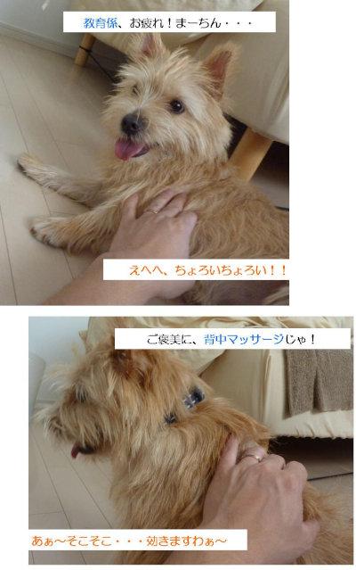 ●お疲れ![1]