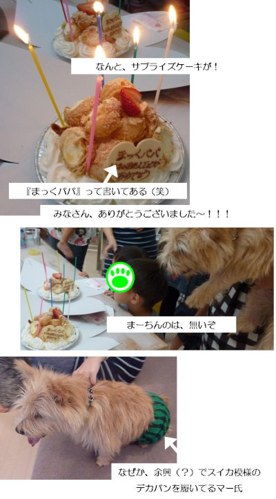 ●けーき[1]