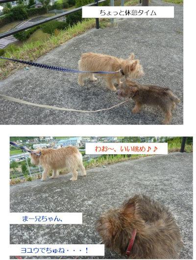 8 いいながめ[1]