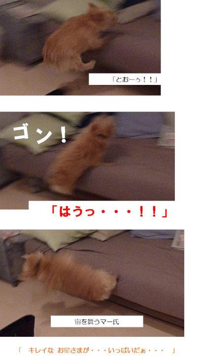自爆[1]