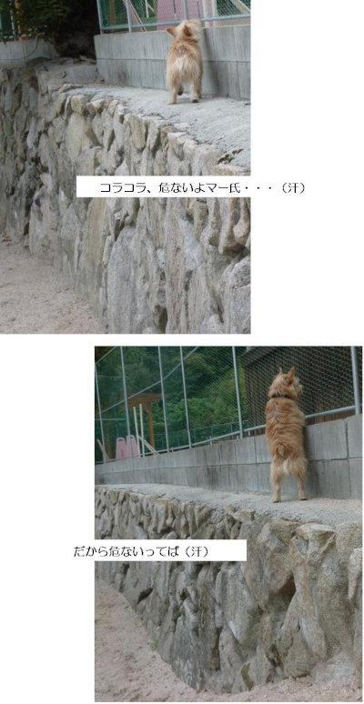 10 あぶない[1]