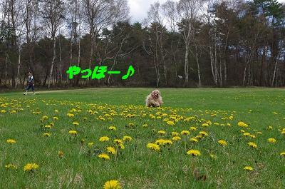 s-あぽ4