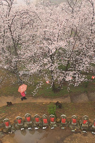 36前田セツ子「ひと雨ごとの春」