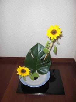 CIMG1569_20120707005900.jpg