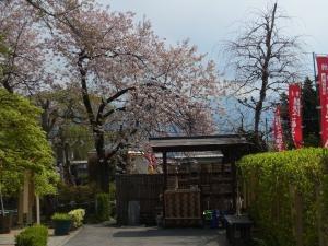 芝桜その他5縮小