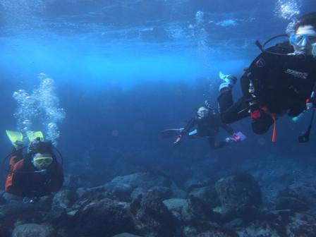 131228-diver.jpg