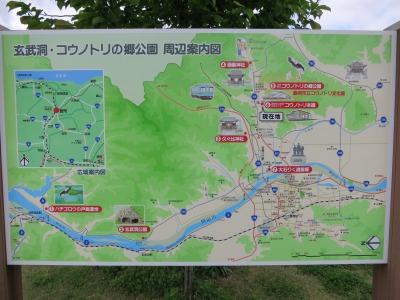 コウノトリの郷公園 (3)