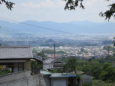 矢田寺 (14)
