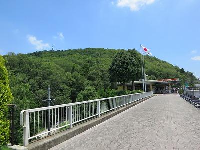 矢田寺 (2)